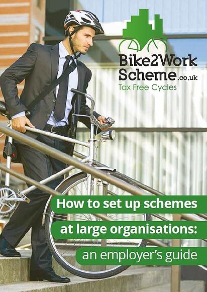 How to set up schemes at large organisations.jpg